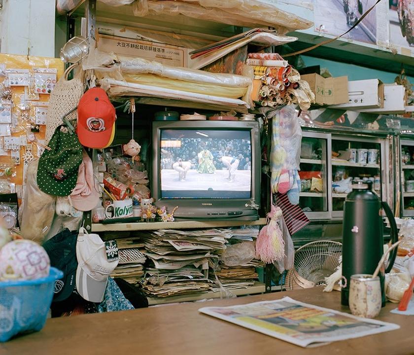 http://bird.depositphotos.com/wp-content/uploads/2015/02/nagaoka_11.jpg