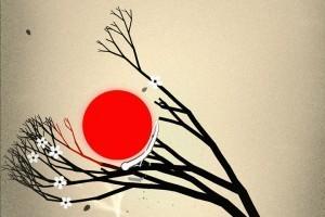 Bonsai_cover