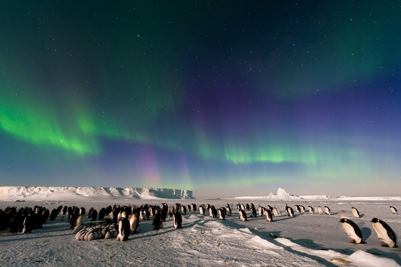 Картинка северного сияния в антарктиде